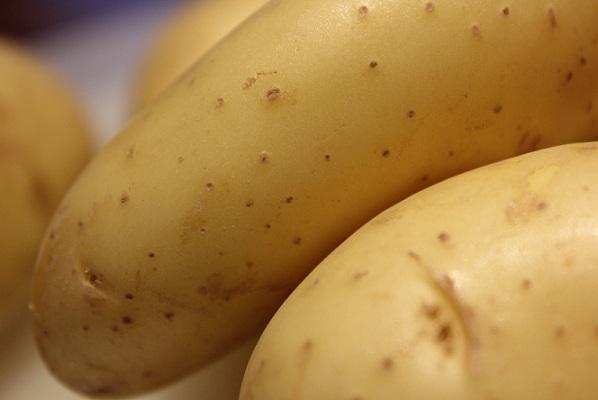 Kremet rotsuppe