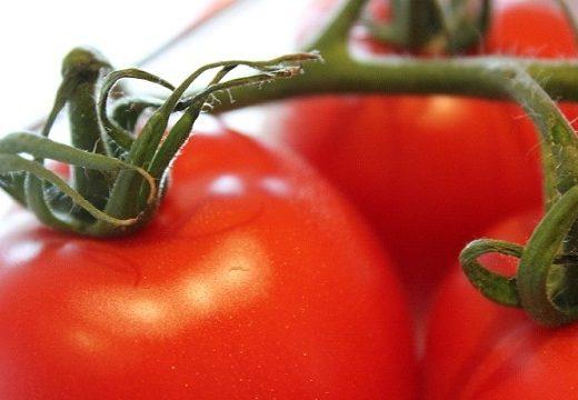 TomatBønner