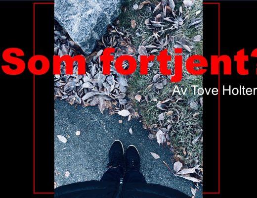 Som fortjent - forside til boka - krimroman - forfatter Tove Holter - Idefull