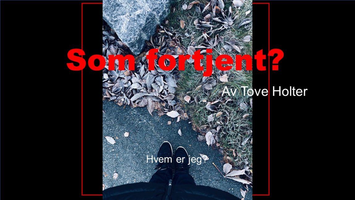 Krimroman - forfatter - Tove Holter